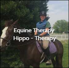 OTvest-Equine_Therapy-thumb